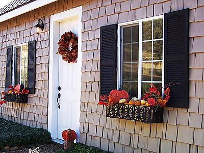 Fall2007 019smallHL
