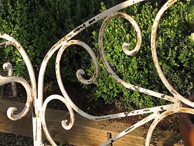 Gardensep2008 003small