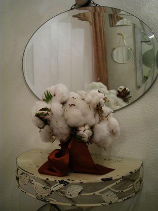 Cotton 009