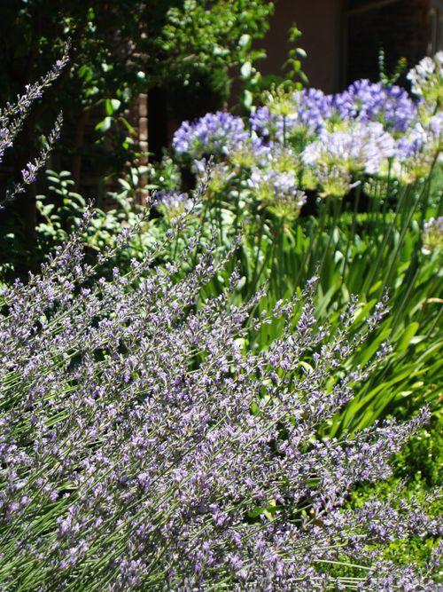 Flowerarrangment 005small