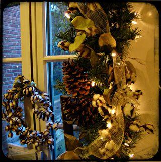 Windowcotton