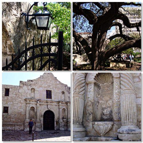 Alamo5
