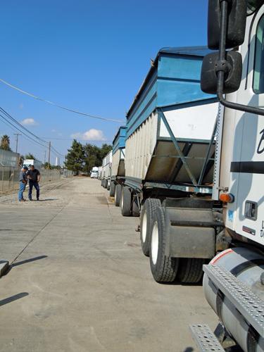 Nuthouse trucks