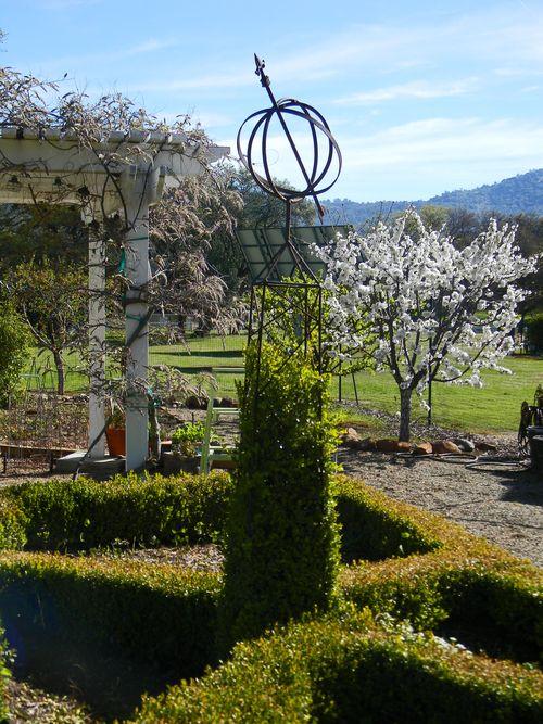 Catheysvalleyspring2011 014small