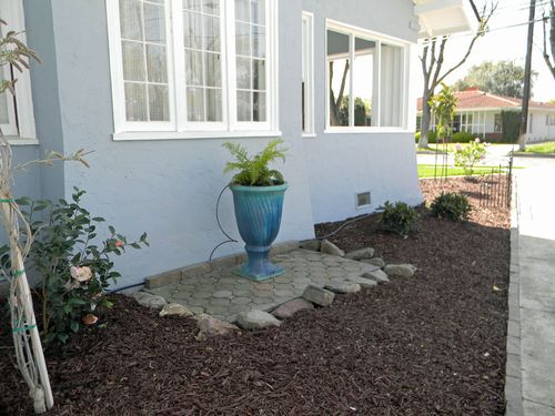 Gardenfrontyardmarch2011 015small