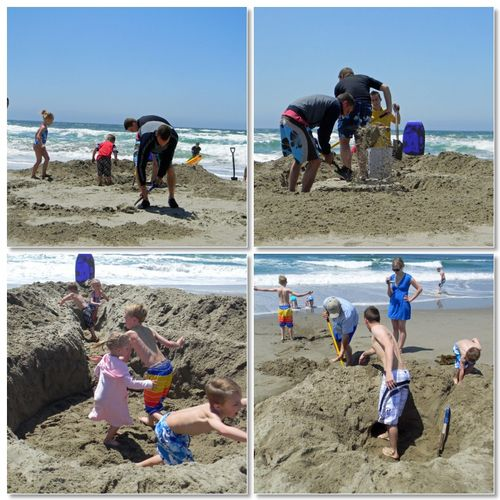 Beachhouseholes