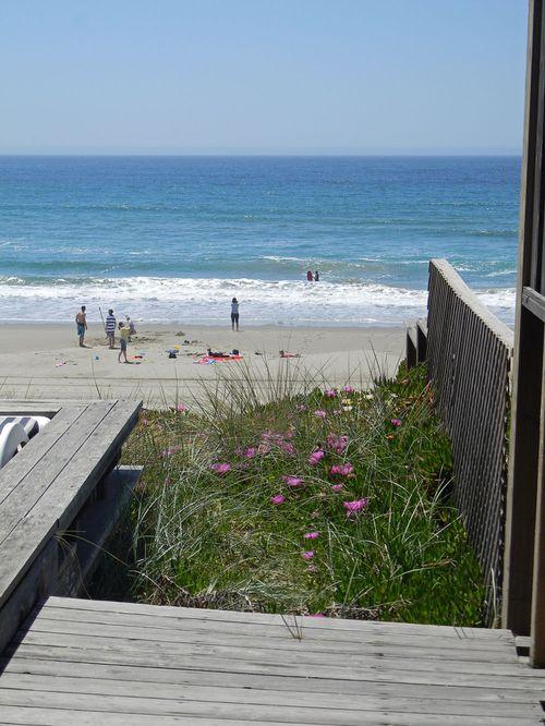 Beachhouse2011 014dayone