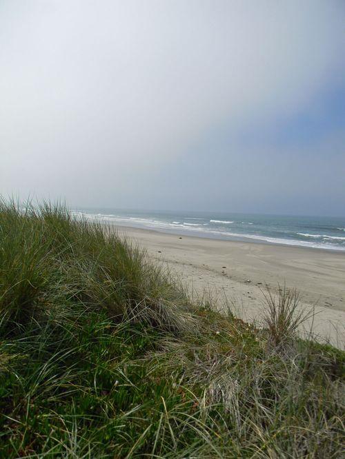 Beachhouse2011 234daythree