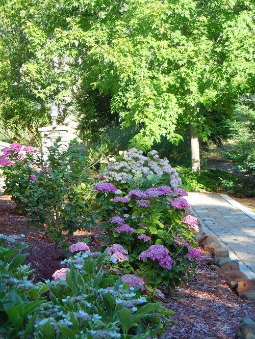 Flowercvjune2011 006small