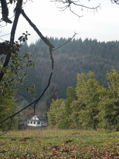 Blogshannonjan2012 004