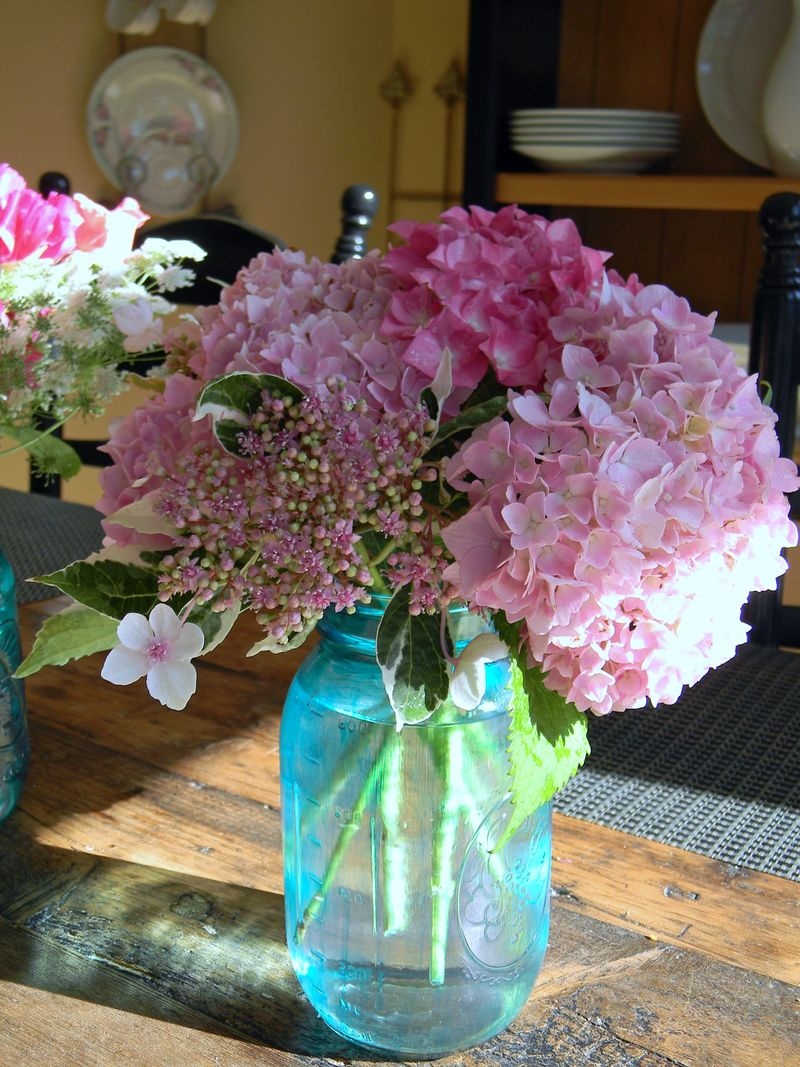 Blogflowersjune2012 056