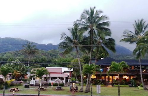 Kauaivillage