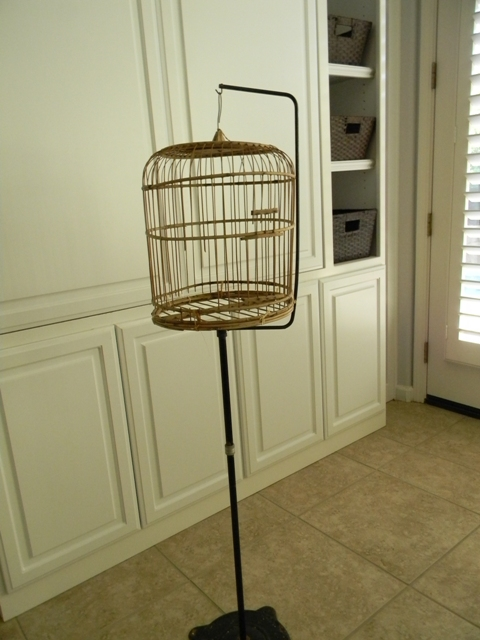 Birdcage 012