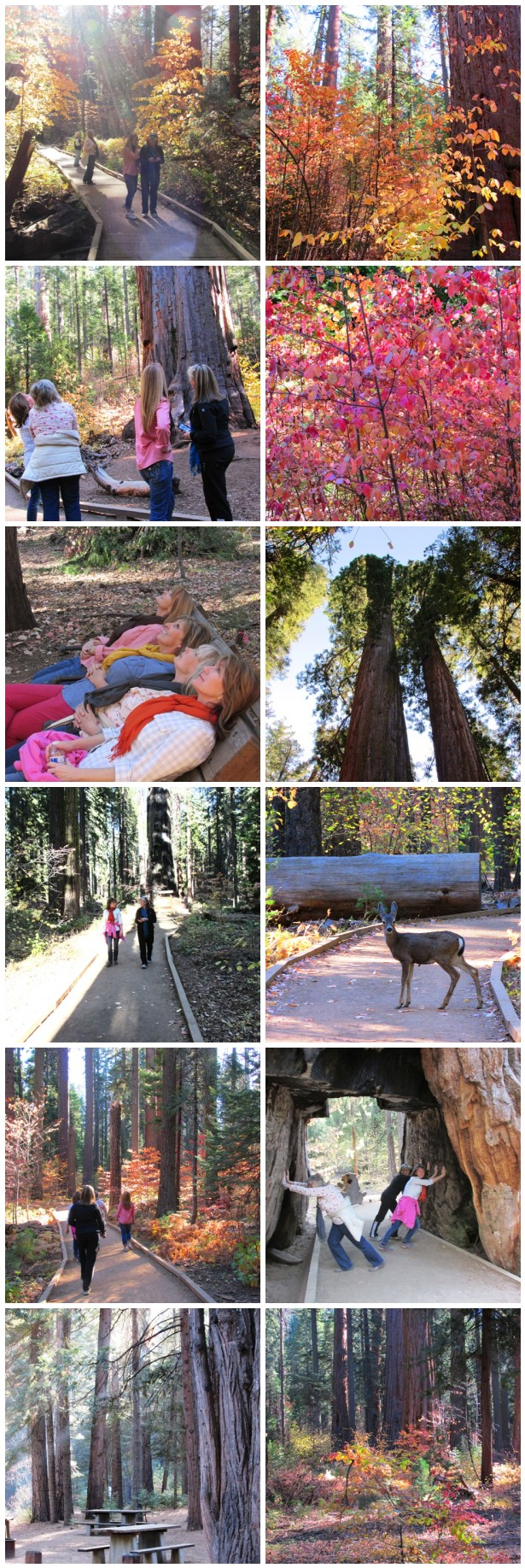 Cabin-weekend-hiking