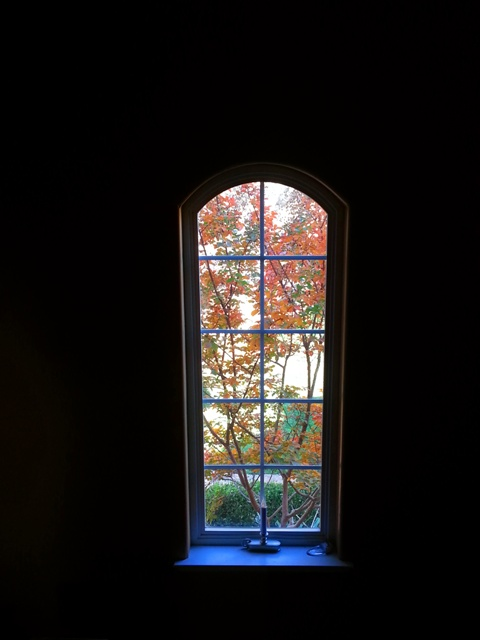 Catheysvalley-window-fall-large