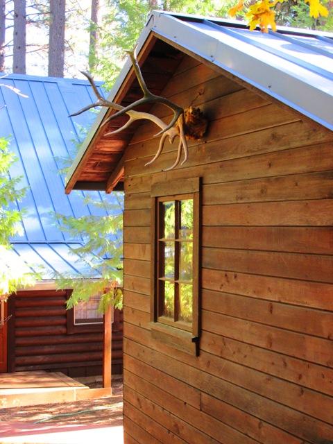 Blog-cabin-bunkie-antler