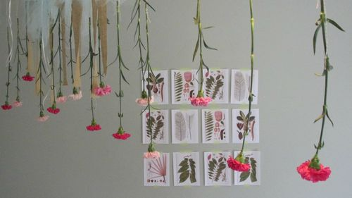Flower potluck hanging flowers and art prints