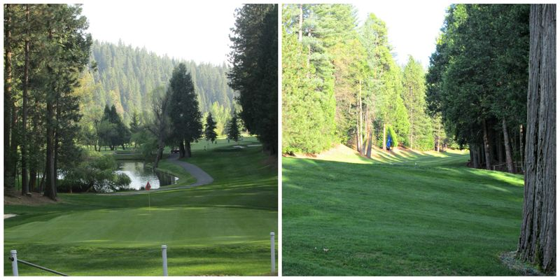 Cabin golf course arnold  Collage