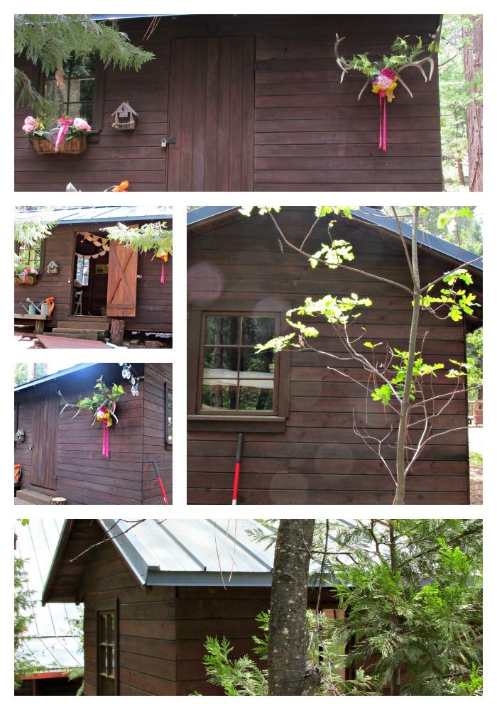 Cabin bunkie-