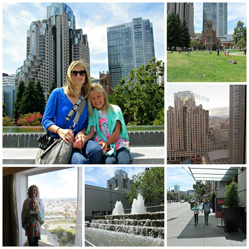 San Francisco Westin Collage