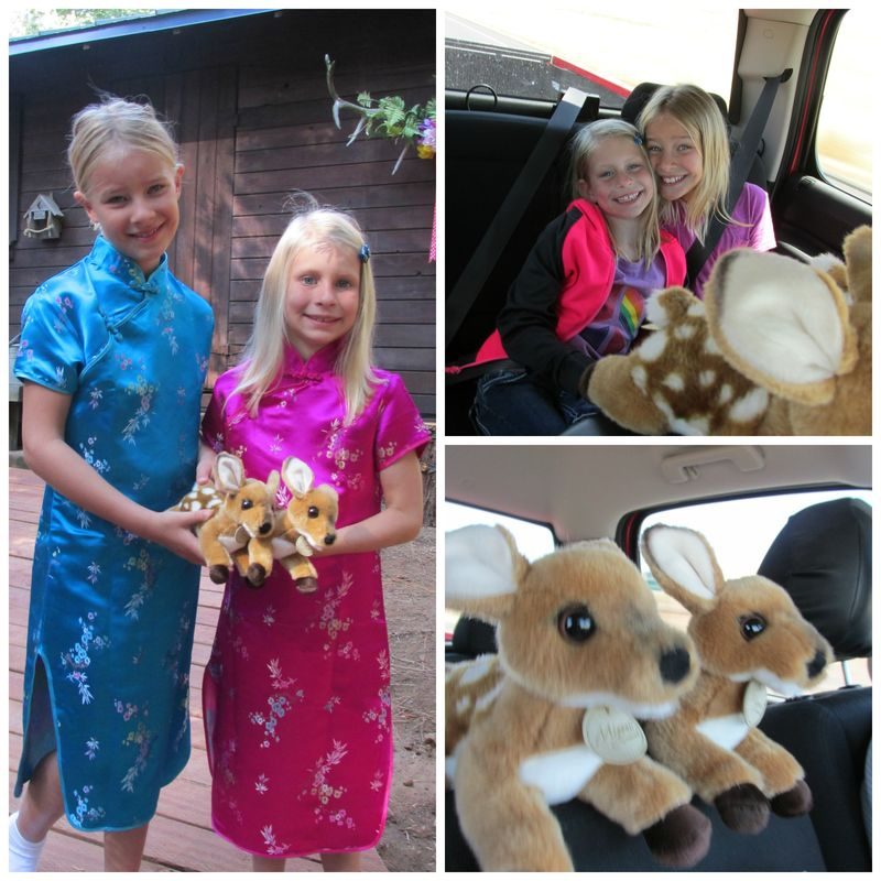 Cabin Carlee and Anna Collage