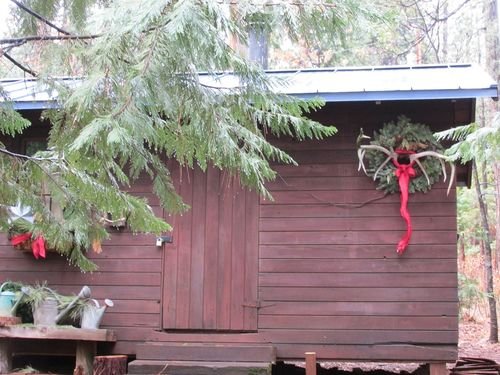 Blog-bunkie in the rain