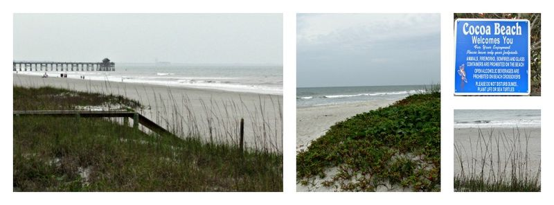 Cocoa beach florida Collage