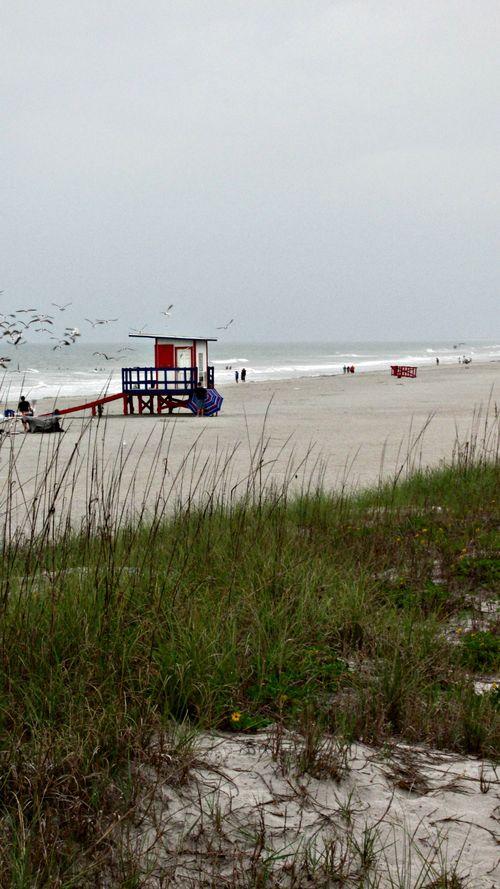 Cocoa beach dunes and lifeguard