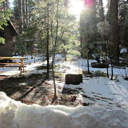 Cabin in April
