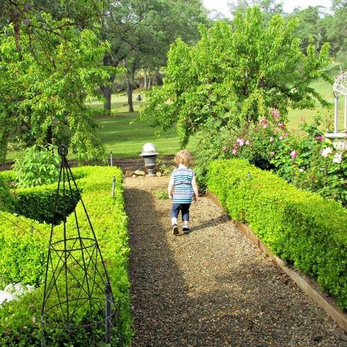 Ellie in the garden