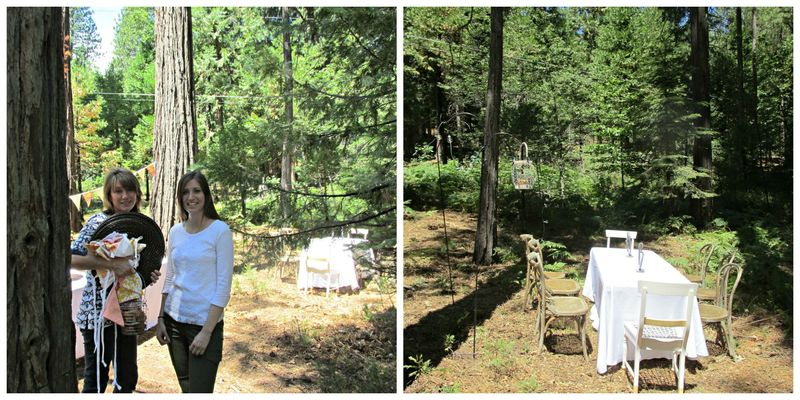 Dinner in the woods setup Collage