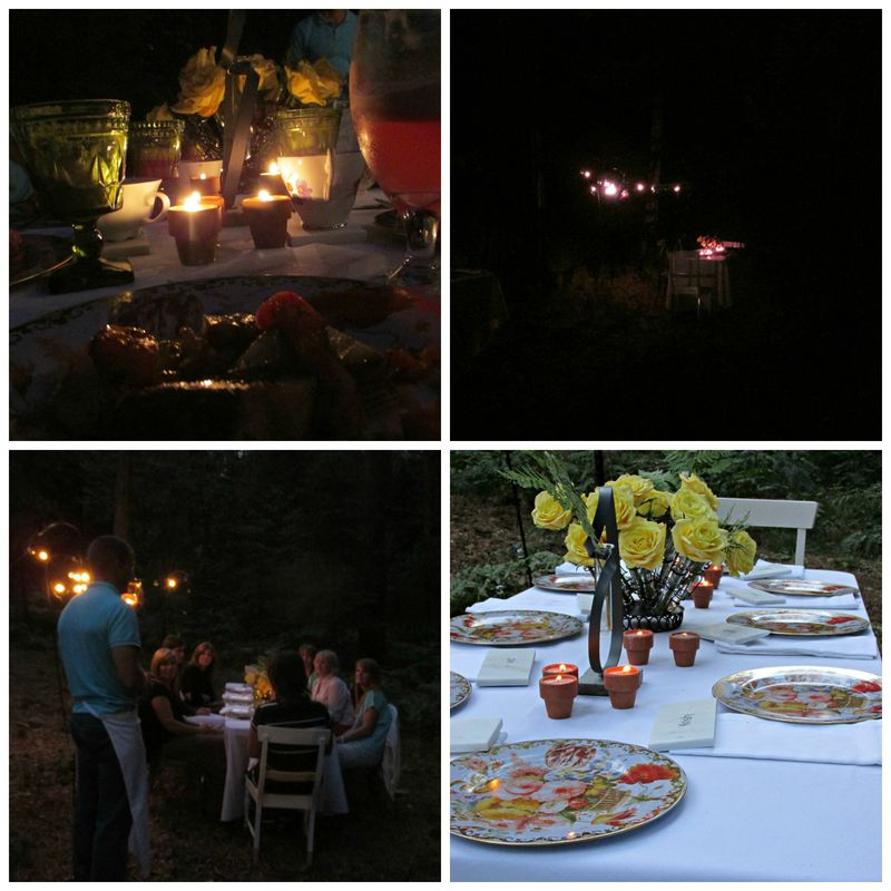 Dinner in the woods lights Collage