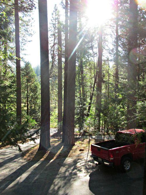 Cabin in the morning