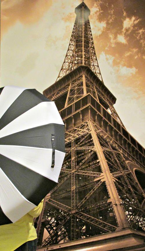 Relief society umbrella sandi