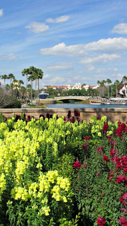 Orlando universal river