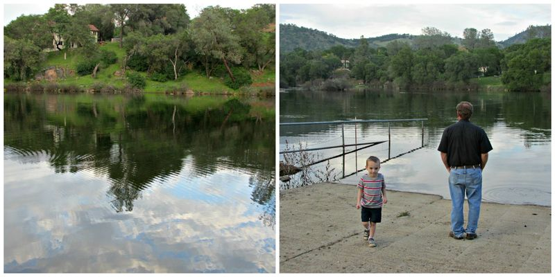 Lake Collage