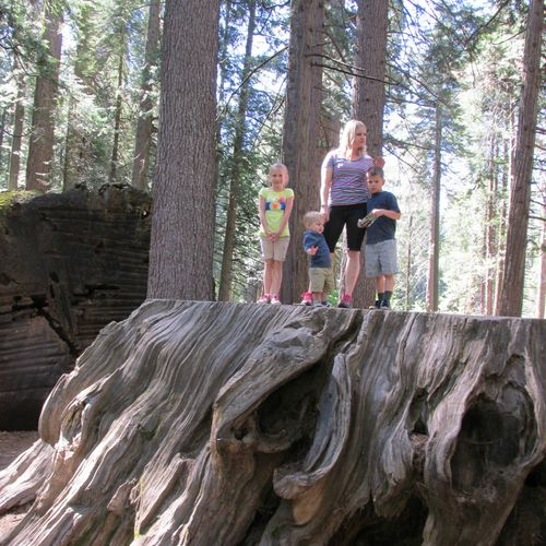 Big trees- carlee and heidi