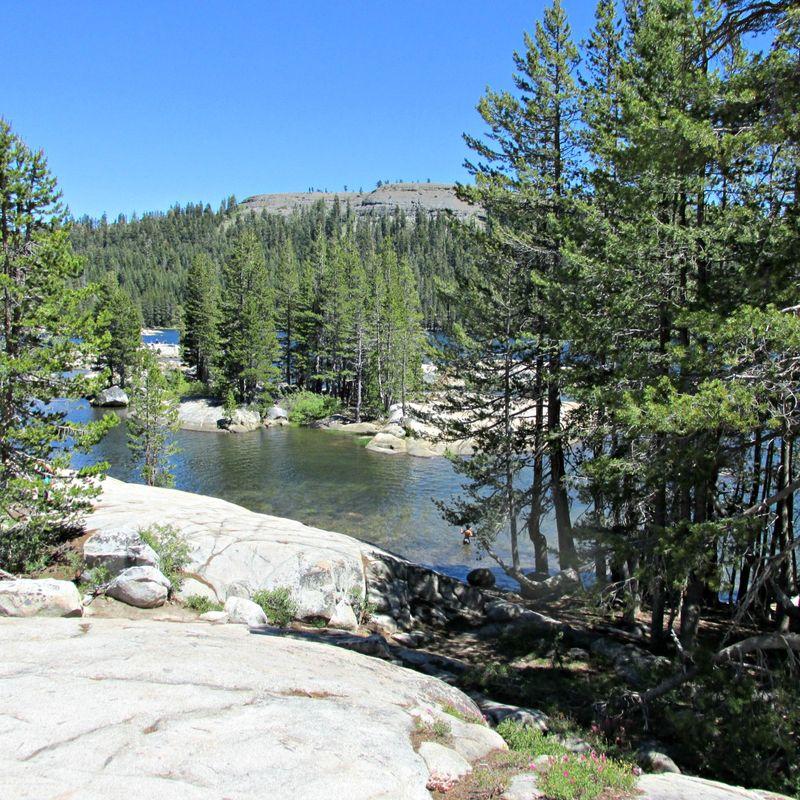Alpine lake rocks