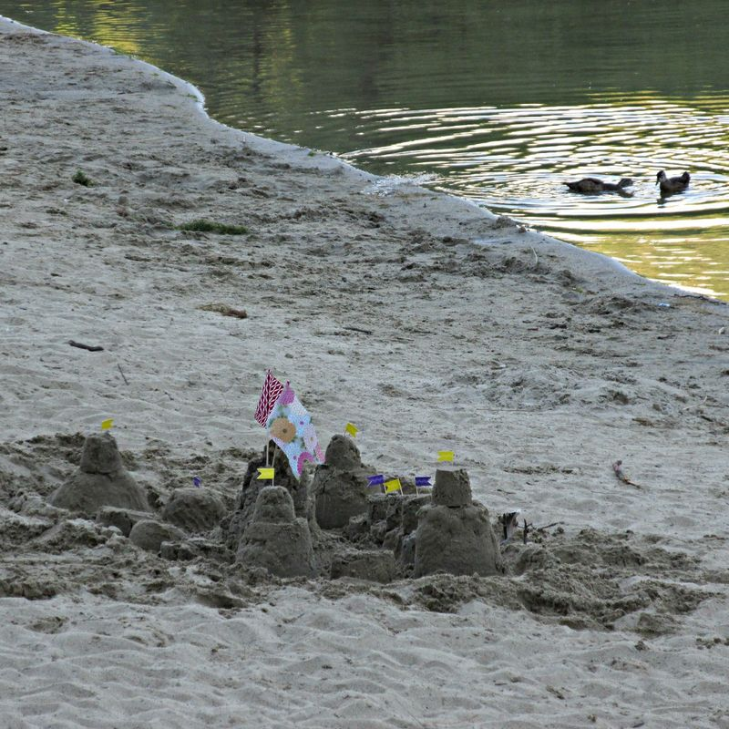 Sandcastle ducks