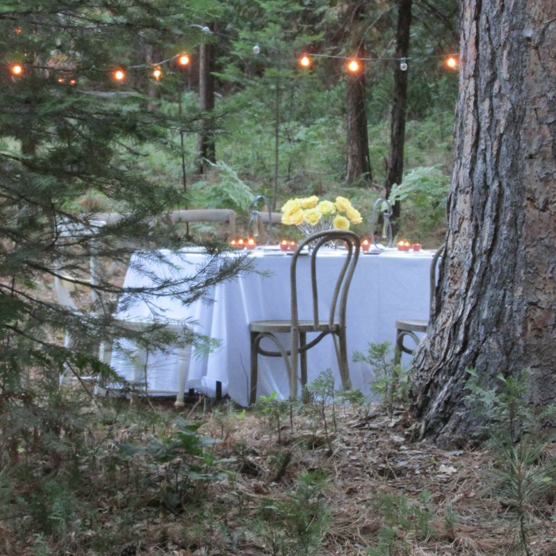 Dinner in the woods lights and table