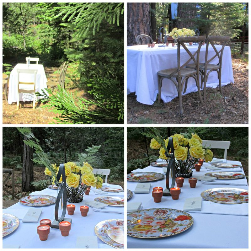 Dinner in the woods table Collage