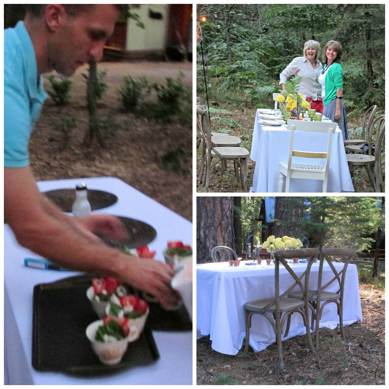 Dinner in the woods tea cups Collage