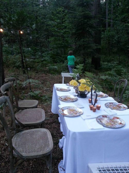 Pie in july dinner table 2