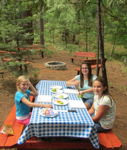 Girls day at the cabin- apple art