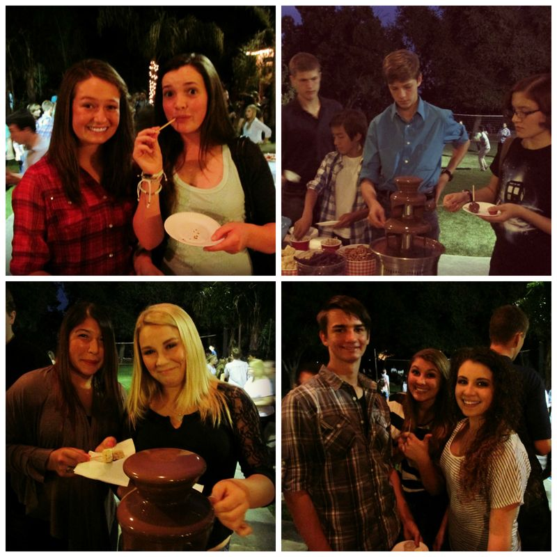 SNA Chocolate fountain Collage