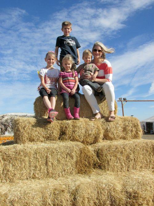 Corn maze haystack heidi