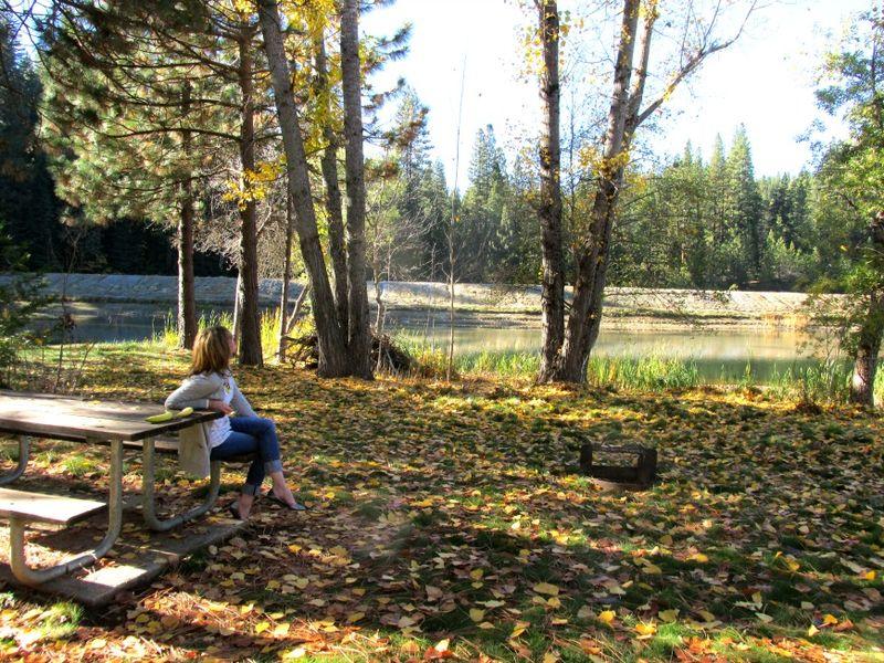 Enchanted fall gathering Sandi