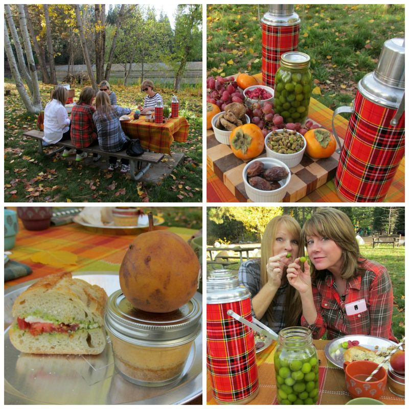 Fall gathering picnic Collage