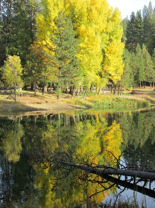Enchanted fall hike lake