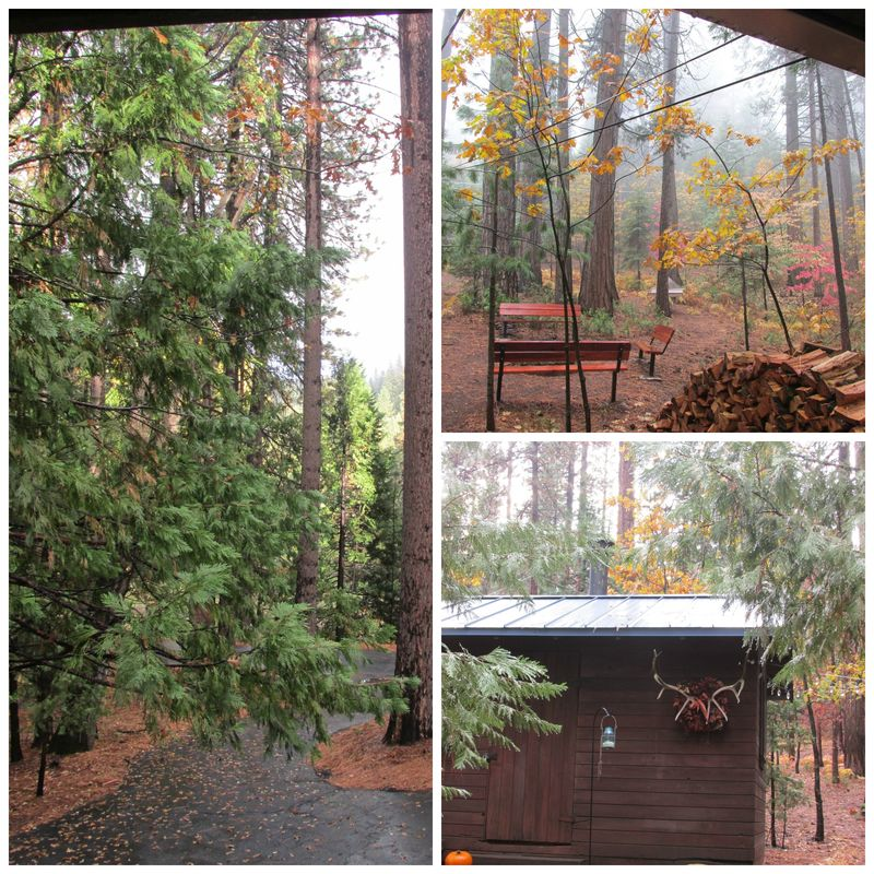 Cabin in the rain Collage